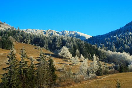 climatic: French countryside in winter. Perception of the climatic reheating : there is no snow. A very dry winter.