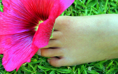 Portrait of a childs foot and a pink flower on green grass