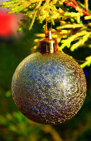 Portrait of a golden ball, hanging from a Christmas tree