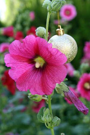 Portrait of a golden ball hanging beside a pink flower in the garden