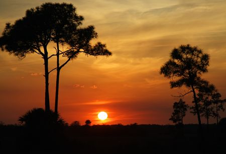 Big Cypress Sunset Stock Photo
