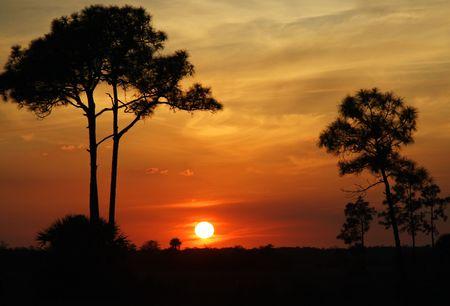 Big Cypress Sunset Stock Photo