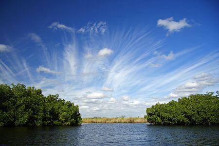 R�o de Turner, reserva nacional de Big Cypress
