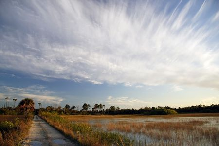 Everglades Backcountry Trail, Big Cypress National Preserve