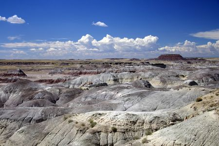 A scenic view of the Painted Desert in Petrified Forest National Park
