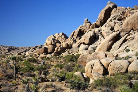 Large Boulders in Joshua Tree National Park