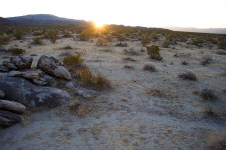 El sol se pone en el Parque Nacional de joshua �rbol