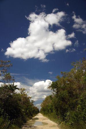 Scenic Loop Road after a hard rain, Florida Everglades, Big Cypress National Preserve