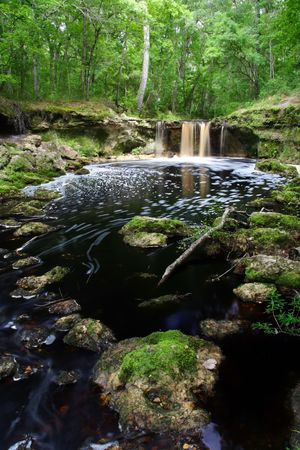 Falling Creek Falls in Northern Florida Stock Photo