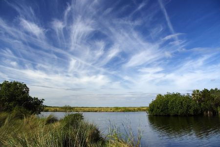 sawgrass: The Turner River in the Everglades, Big Cypress National Preserve