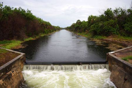 Old Dam in the Everglades, Picayune Strand State Forest  photo