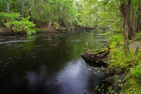 The scenic Santa Fe River in Florida