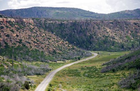 Roadway leading to Mesa Verde National Park photo