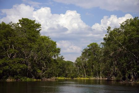 Silver River State Park near Ocala, Florida Stock Photo