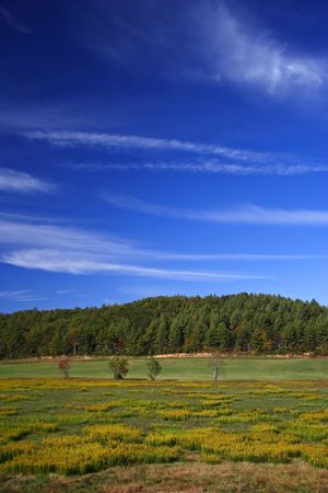 Bucolic Landscape in the Northern Georgia Appalachians Stock Photo