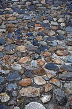 Ancient cobblestone street in Charleston, South Carolina