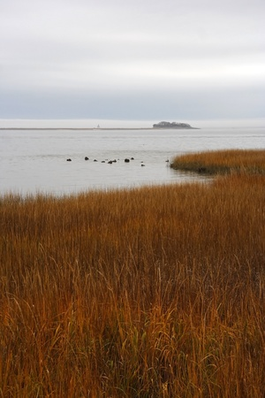 Charleston Harbor with historic Castle Pinckey in the Background