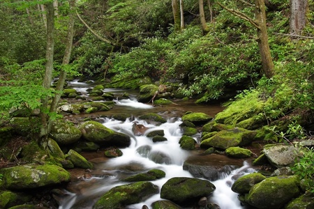 Small Cascades, Great Smokey Mountains National Park, Tennessee Stock Photo