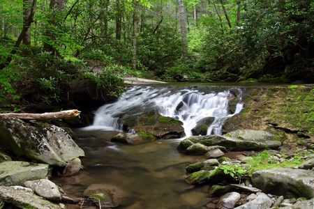 A small creek spills over scenic Parsons Branch Road, Great Smokey Mountains National Park photo