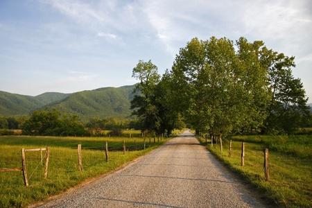south carolina: Rural Road through Cades Cove
