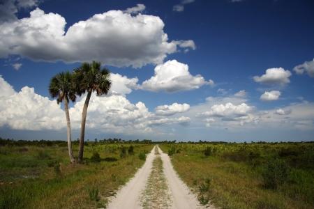Esc�nica Kissimmee pradera Preservar State Park, Florida