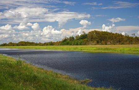 Big Cypress National Preserve en los Everglades de Florida Foto de archivo