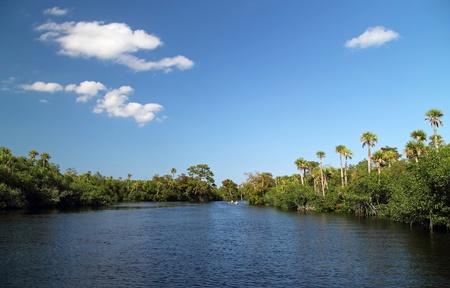 El pintoresco r�o Loxahatchee en el sur de Florida