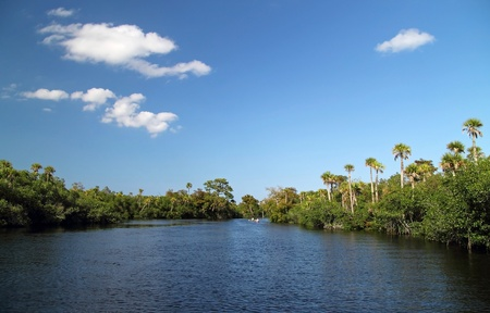 The scenic Loxahatchee River in South Florida