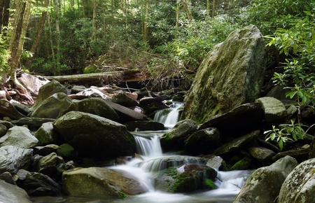Scenic Creek in Great Smokey Mountains National Park photo