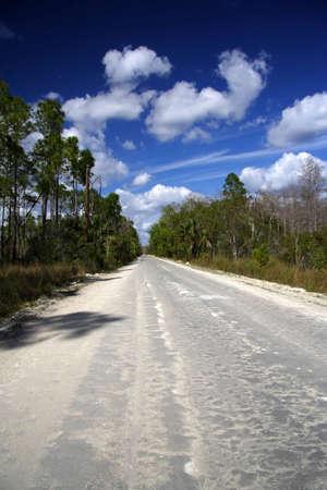 Burns Lake Road, Big Cypress National Preserve