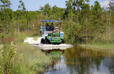 BIG CYPRESS NATIONAL PRESERVE, FL � September 17: Tour guide Captain Steve takes visitors on a swamp buggy tour through the heart of the Big Cypress swamp September 17, 2011 in Big Cypress National Preserve, FL.