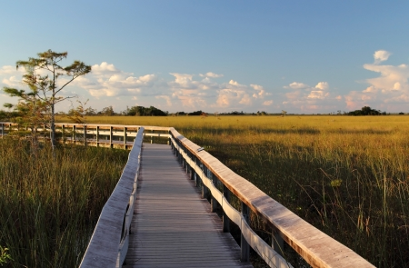 Pahayokee Boardwalk in late afternoon, Everglades National Park Stock Photo