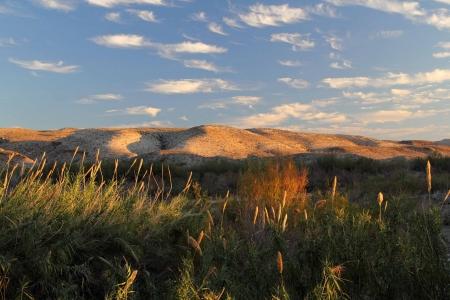 Scenic Golden Hills along the Rio Grande, Big Bend National Park, Texas