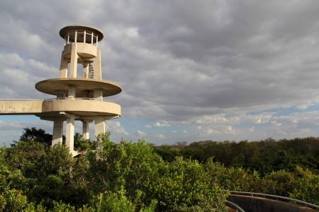 ft lauderdale: Shark Valley observation tower in Everglades National Park