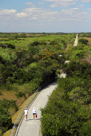 ft lauderdale: Hikers enjoy Shark Valley in Everglades National Park
