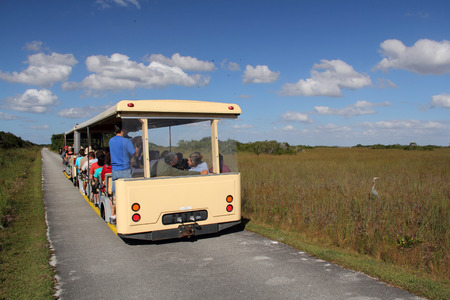Everglades national park: Tram Tour in the Shark Valley section on Everglades National Park