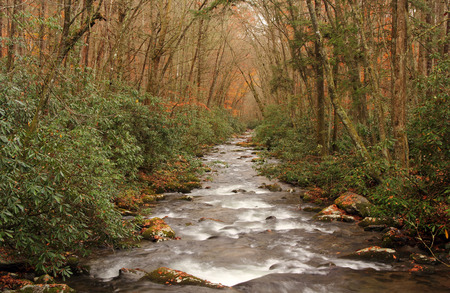 great smokies: Oconaluftee River in Great Smokey Mountains National Park, North Carolina