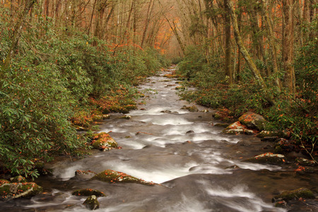 smokies: Oconaluftee River in Great Smokey Mountains National Park