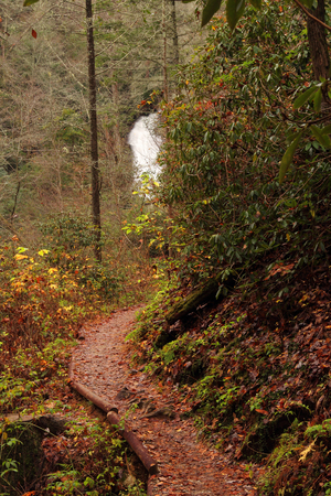 appalachian mountains: Trail to the Helton Creek Falls in the Appalachian Mountains