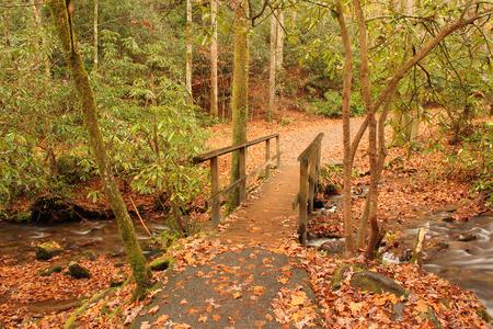 great smokies: Small pedestrian bridge next to Mingus Mill, Great Smokey Mountains National Park