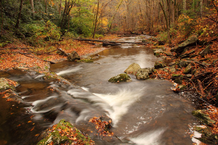 smokey: Little River, Great Smokey Mountains National Park, Tennessee