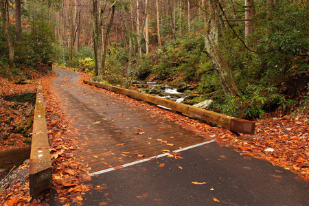 smokies: Roaring Fork Motor Nature Trail in the Great Smokey Mountains