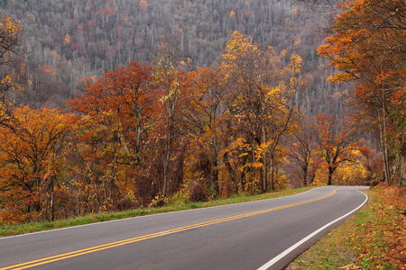 smokies: Autumn Colors in Great Smokey Mountains National Park