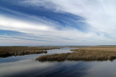 st  mark's: Cloudy Landscape in the St. Marks National Wildlife Refuge, Florida Gulf Coast Stock Photo