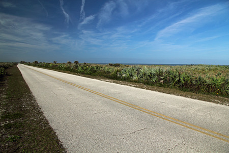cape canaveral: Scenic Road through the Canaveral National Seashore in Cape Canaveral, Florida