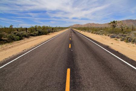 drive through: Scenic Drive through the Mojave Desert in Mojave National Preserve, California