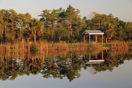 Midway Campground in Big Cypress National Preserve, Florida Everglades