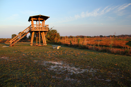 everglades: The Beautiful Everglades in Sunny South Florida Stock Photo