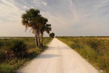 cape canaveral: Black Point Drive, Merritt Island National Wildlife Refuge, Florida