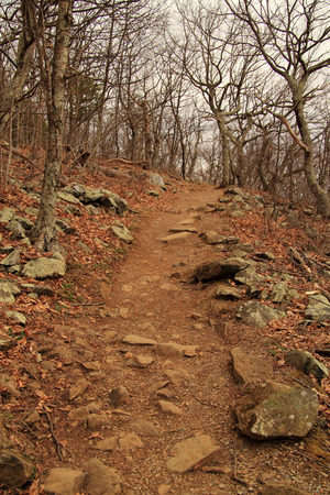 The Stony Man Trail is a short and pleasant hike and offers some of the best views of the Appalachian Mountain Range in Shenandoah National Park in the state of Virginia